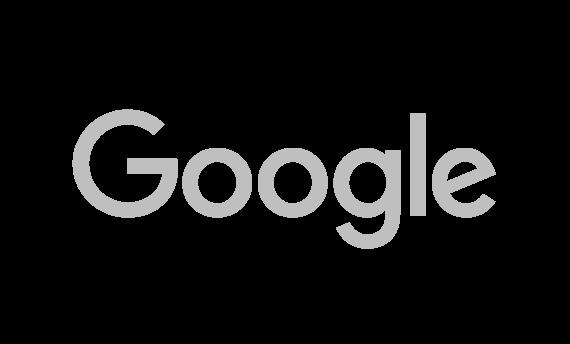 Eo AI google grey
